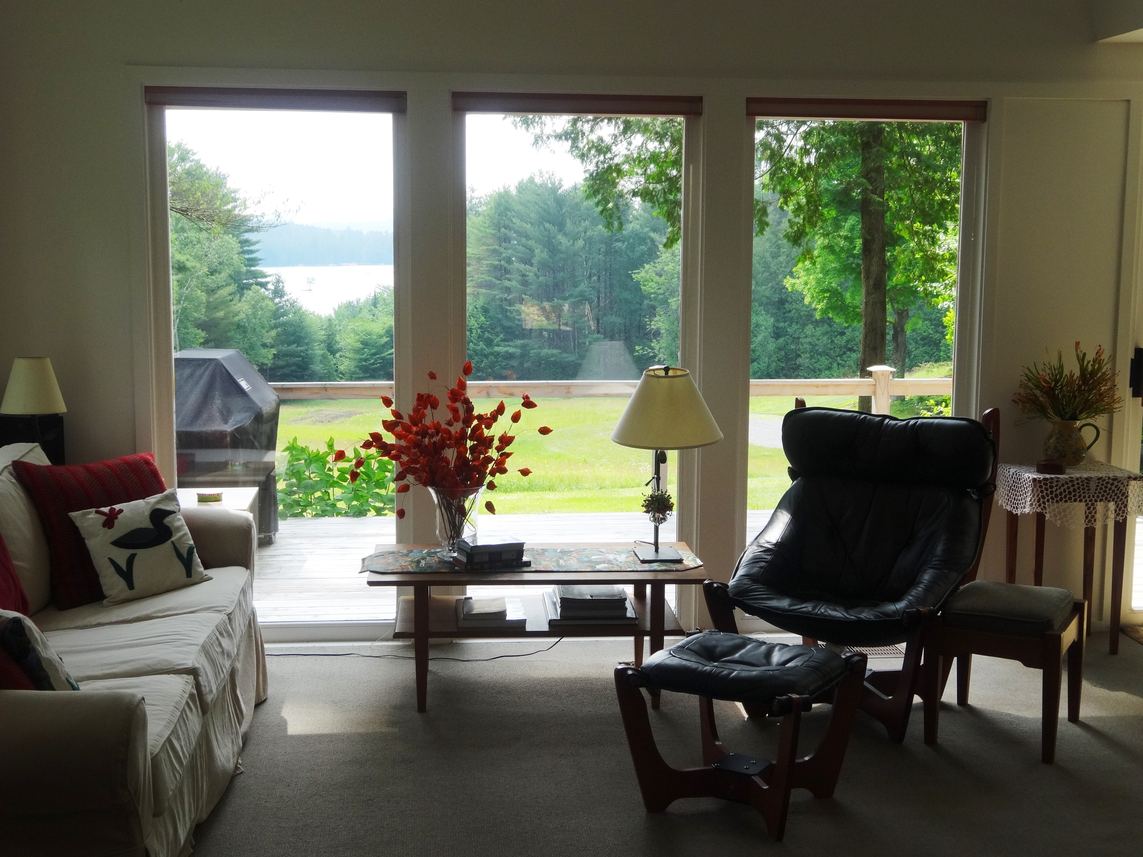 28 Lake View Lane Living Room With Of Loon